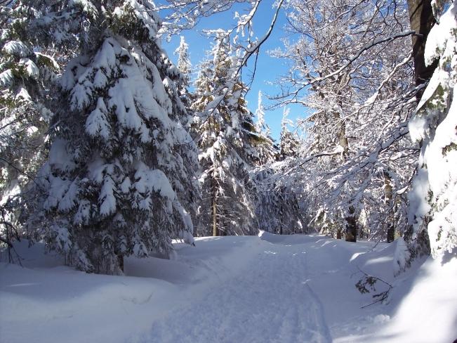 _zima_przyroda_natura_podroze_gory