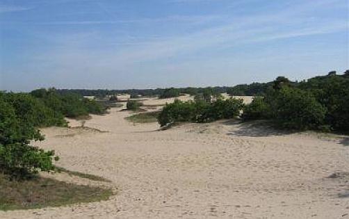 Nationaal Park De Loonse en Drunense Duinen, Holandia